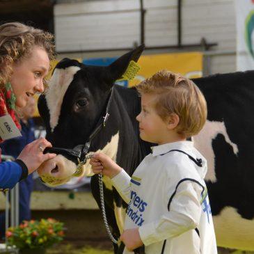 I-Cow Aurora winnaar FDV Wintershow