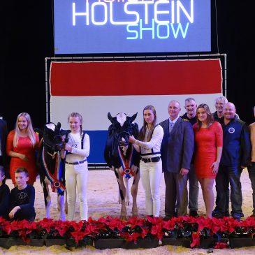 Chapelhill zegeviert op Holland Holstein Show